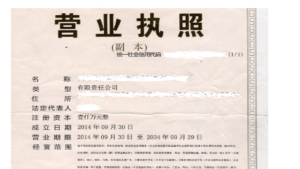 Business license showing registered capital