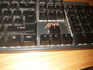 One of the many keyboards available on the market